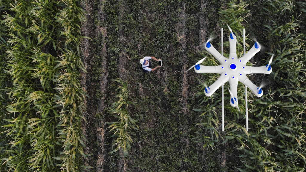 Farmer spraying his crops using a drone