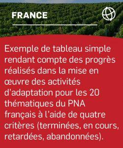 Exemple de tableau simple rendant compte des progrès réalisés dans la mise en œuvre des activités d'adaptation pour les 20 thématiques du PNA français à l'aide de quatre critères (terminées, en cours, retardées, abandonnées).